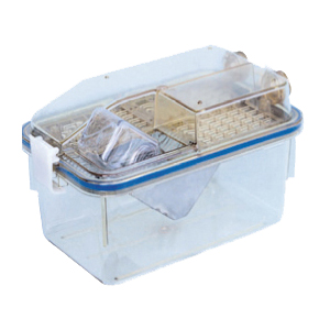 Individually Ventilated Cage for mouse
